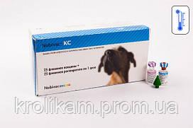 Вакцина Нобивак KC 1 доза MSD AH