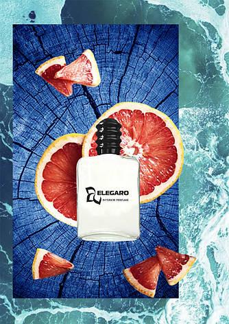 Rise Up. Интерьер парфюм Elegaro серия Original Mood. Освежитель воздуха для дома., фото 2