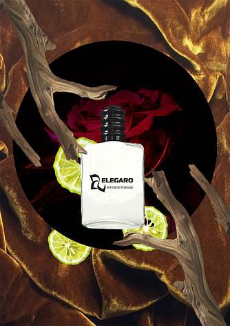 Dizzy mood. Интерьер парфюм Elegaro серия Original Mood. Освежитель воздуха для дома., фото 2