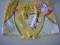 Трусы детские для девочки шортиками цветные с зайчиком размер 4-9 лет.