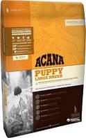 Сухий корм для щенят великих порід ACANA Puppy large breed dog 17 кг, фото 1