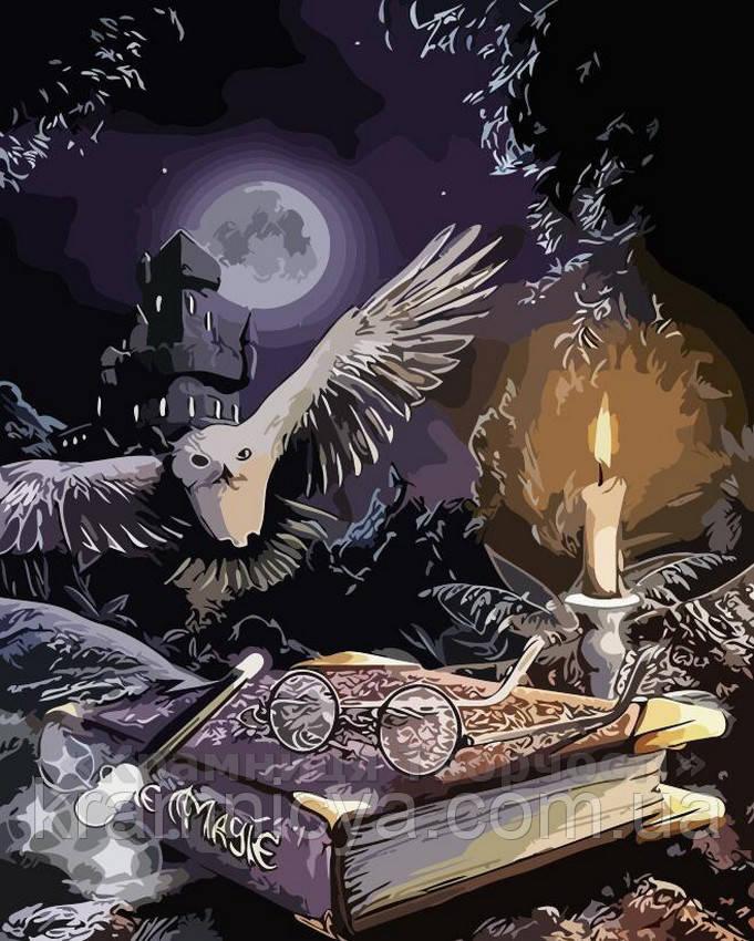 Картина по номерам Магия сказки, 40x50 (AS0151)