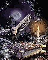 Картина по номерам Магия сказки, 40x50 (AS0151), фото 1