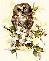 Картина по номерам Сова на ветке, 40x50 (AS0164), фото 1