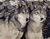 Картина по номерам Преданность волка, 40x50 (AS0170), фото 1