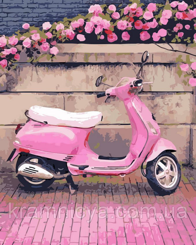 Картина по номерам В розовом стиле, 40x50 (AS0200)