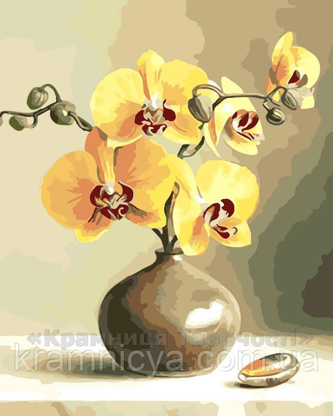 Картина по номерам Орхидеи, 40x50 (AS0019)