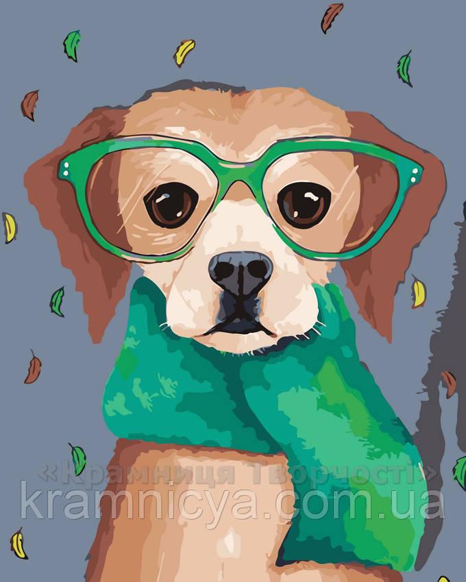 Картина по номерам Пес в очках, 40x50 (AS0071)