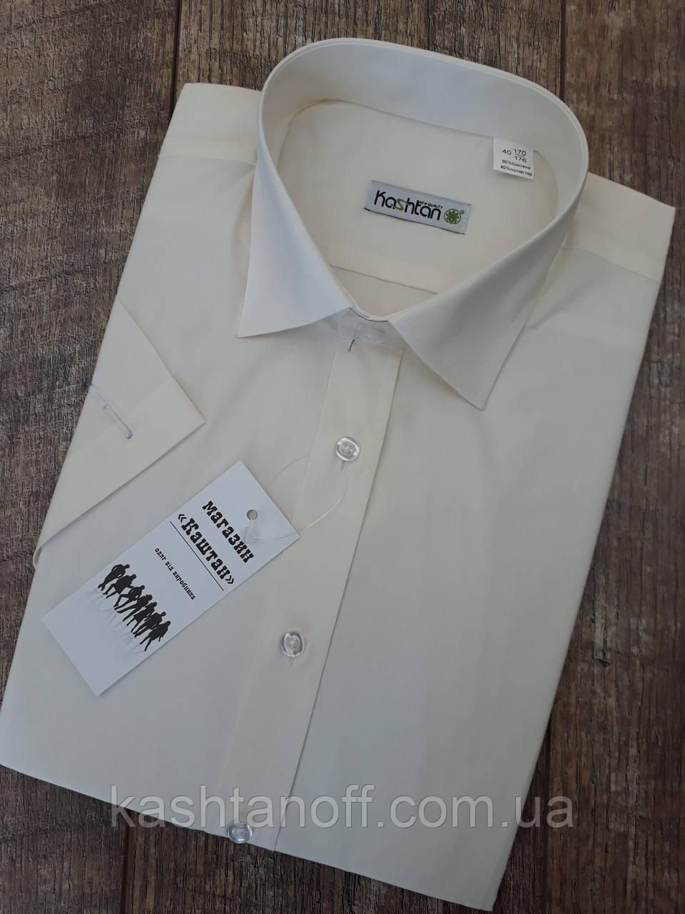 66884cf5942 Мужская рубашка цвета шампань с коротким рукавом - Интернет-магазин КАШТАН  Мужская