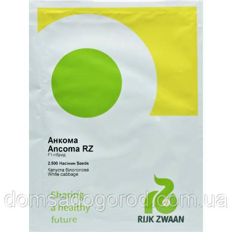 Капуста АНКОМА F1 | ANCOMA Rijk Zwaan 1000 шт