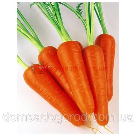 Морковь АБАКО F1 1,8-2,0 Seminis 1 000 000 шт