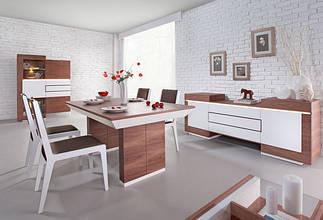 Польская мебель (Future-Line) Ceglewski
