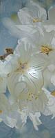 Плитка Paula Flowers BLC (200x500 мм)