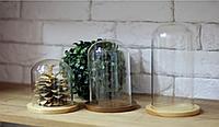 Колпак стеклянный на деревянной подставке  (колба Ø 80; h=105мм)