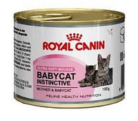 Royal Canin (Роял Канин) BABYCAT INSTINCTIVE мусс для котят с рождения до 4 месяцев, 195г
