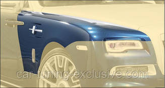 Front fenders Mansory for Rolls-Royce Dawn