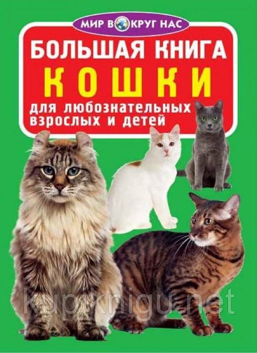 Мир вокруг нас. Большая книга. Кошки