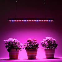 Светодиодные фитосветильники и фитопрожектора Vela