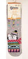 Носки детские с котом махровые с силиконовым покрытием на стопе, фото 1