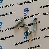 Болт крепления бича D40428300, 3009509X1 Massey Ferguson
