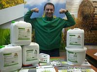 Гумат Калия Экстра для листовой подкормки бобовых, зерновых и масличных культур. Внесение гумата в критических фазах роста 0,3-0,4 л/га/тн