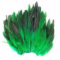 Перья петуха декоративные (Перо) Зеленые 10-20 см 20 шт/уп