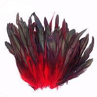 Перья петуха декоративные (Перо) Красные 10-20 см 20 шт/уп, фото 1