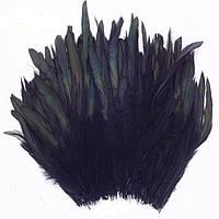 Перья петуха декоративные (Перо) Черные 10-20 см 20 шт/уп, фото 1