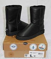 Женские классические черные кожаные угги UGG Australia Classic Short короткие Овчина, Угги, Натуральная овчина, Заливное покрытие, 36