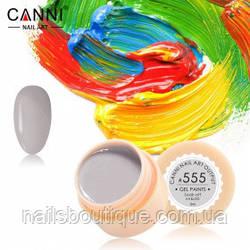 Гель краска Canni №555, светло-серая