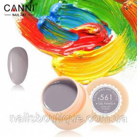 Гель краска Canni №561, серый асфальт