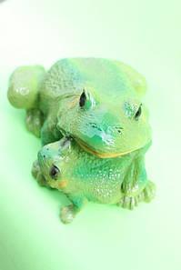 Жаба семья