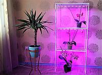 Стеллаж-6 с фито-лампами, подставка для цветов , фото 1