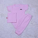 Летний кокон + трехпредметник Нежность, розовый, фото 4