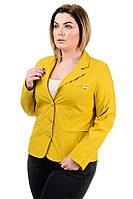 Пиджак женский длинный рукав р50-60