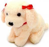 Співаючий щеня CL1187-W