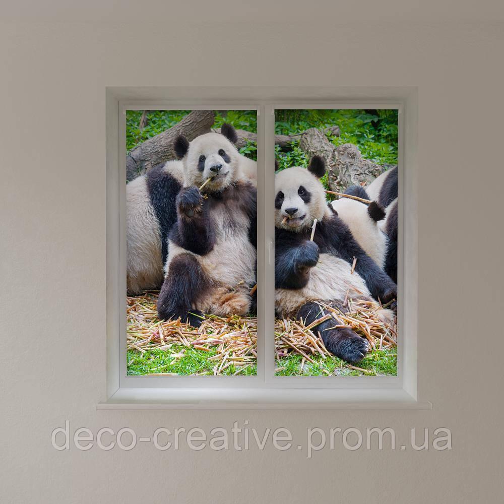 Рулонные шторы панда