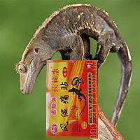 Пластырь инфракрасный от боли в области шейного и поясничного отделов 8шт (змея и ящерица)