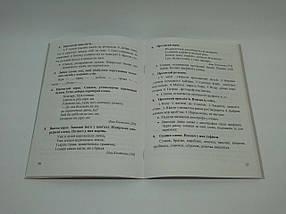 Дидактичні матеріали з української мови 3 клас до Захарійчук Тренажер Данилко ПіП, фото 2