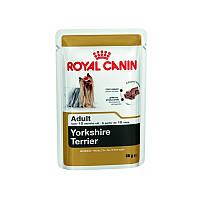 Royal Canin (Роял Канин) YORKSHIRE TERRIER ADULT влажный корм для взрослых собак породы йоркширский терьер (85 гр)