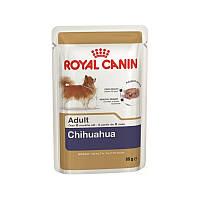 Royal Canin (Роял Канин) CHIHUAHUA ADULT влажный корм для взрослых собак породы чихуахуа (85 гр)