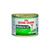 Консервы Royal Canin Mature +8 для стареющих собак старше 8 лет (195 г)