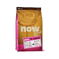 NOW FRESH™ Grain Free Adult Cat Recipe Беззерновой корм для взрослых кошек с индейкой, уткой и лососем (100 г)