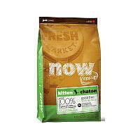 NOW FRESH™ Grain Free Kitten Recipe Беззерновой корм для котят с индейкой, уткой и лососем (230 г)