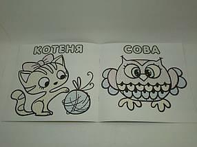 Глорія Водяні розмальовки Качка, фото 3