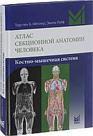 Торстен Б. Меллер Атлас секционной анатомии человека. Костно-мышечная система