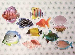 Аквариумные рыбки. Магнитики развивающие. Набор