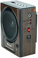 Радиоприёмник-мегафон GOLON RX2999 REC + фонарь
