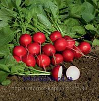 Семена редиса Ролекс F1 2,25-2,50 50000 сем. Бейо заден.