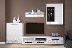 Гостиная Ада Гербор-Холдинг мебельный комплект для гостиной в минималистическом стиле